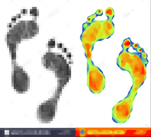 Name:  black-prints-of-feet-on-transparent-paper-black-footprint-isolated-HGHBWD[Elroy 4.txt].jpg