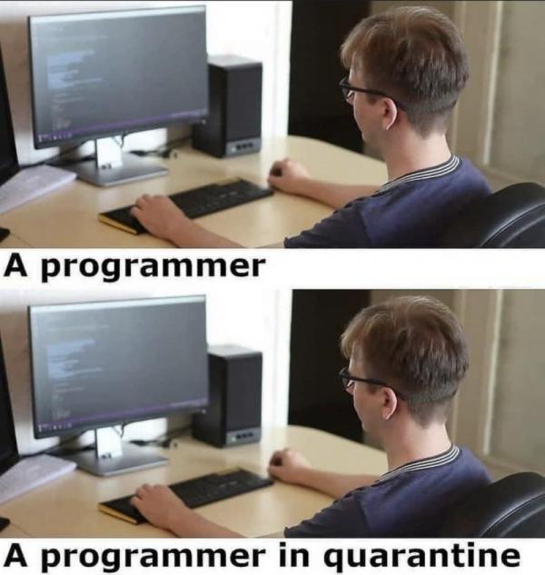 Name:  programmer.jpg
